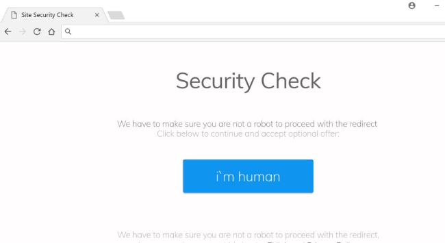 Site Security Check